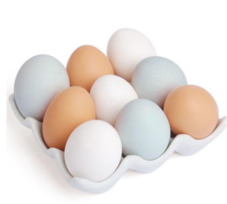 Image Gallery huevos