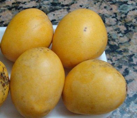 Mangos criollos De Buena Mesa