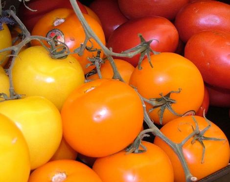 Tomates rojos y amarillos De Buena Mesa